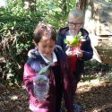 Forest School-Rain Collectors