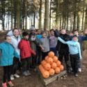 Dukeshouse Wood 2019
