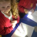 Reception exploring light in science
