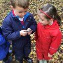 Compass work in forest school