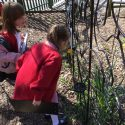 Earth Day in Year 1
