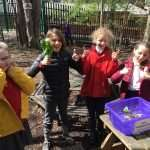Y5 Experience Day